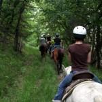 horseback11